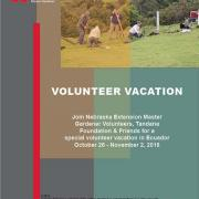 Volunteer Vacation Flyer